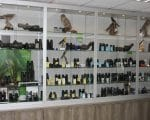 Vogelinformatiecentrum